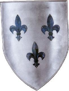 Shield-ornate iron Shield